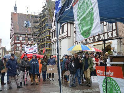 Demonstration, Fridays for future, Oettingen, Schüler